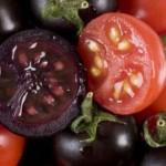 pomodori-antiossidanti-1