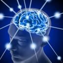 Gli Omega-3 danno una mano al tuo cervello